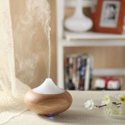 2014 new cute air fresheners for cars is aroma diffuser GX