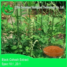 Top quality black cohosh extract powder/cimicifuga racemosa extract