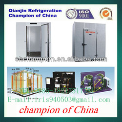 Long Term Preservation Vegetable And Fruit CA Cold Storage Freezer Cold Room