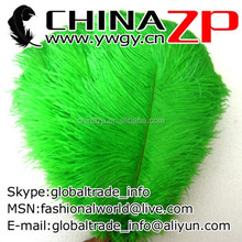 Wholesale Exporting Selected Prime Quality from 14inch to 16inch Cheap Dyed Green Ostrich Feather for Sale