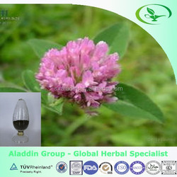 red clover extract 8%~40%Isoflavones for antibiotic