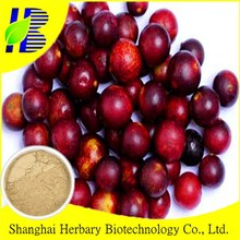 Factory Direct Supply Camu Camu Extract Powder with 20% Vitamin C HPLC