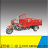 3 wheel Gas Motor Tricycle With Cargo Box