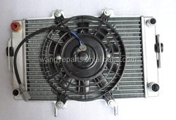 Buyang Feishen EEC 300cc Radiator Assy/Buyang Feishen Atv Parts/Quad Parts/QuadBike parts