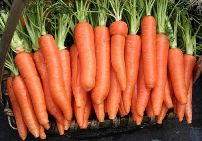 Health Food Importers Dehydrated Carrot Powder Could Make Baby Food