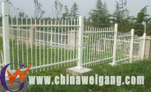 Large cheap outdoor dog fence