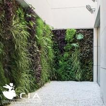 Green wall modules plastic vertical garden plants on walls