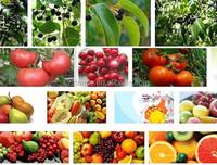 2015 hot sale La-F1.0 kenya juice manufacturers with video