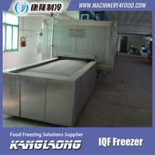 Large Output individual tunnel quick freezer