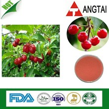 100% Natural 5%, 14%, 17%, 25% Natural Vitamin C AcerolaCherry Extract