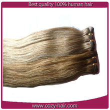 6a grade no shedding malasian virgin hair extensions no smell virgin malaysian curly hair weft