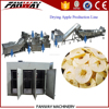 Stainless steel cheap price fruit dehydration plant