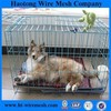 Galvanized welded wire mesh panel used for making cages