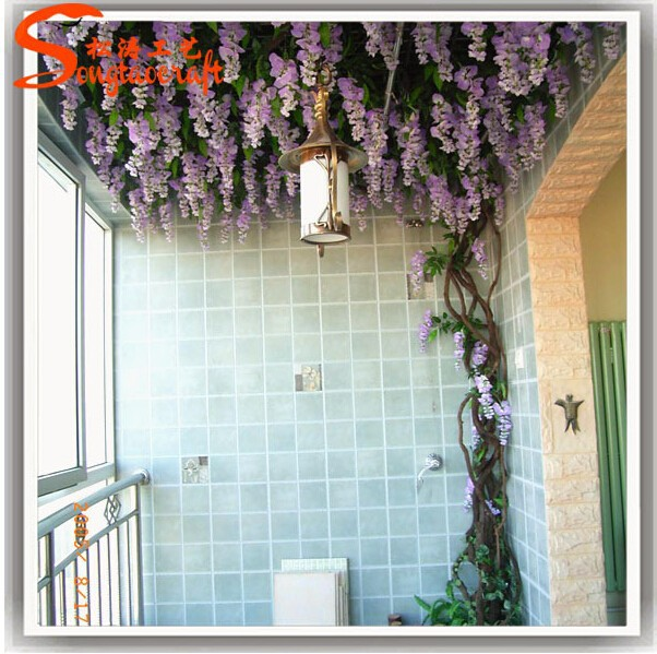 how to get a start off of a wisteria