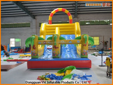 customized Plato PVC tarpaulin slip and slide inflatable with dual lane