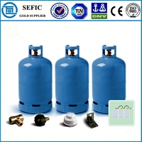 Welded Steel Professional Supplying 5kg LPG Cylinder