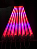 fruit and vegetable cultivation 18w 1.2m t8 pink led tube light for plant growth