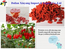 Factory Supply Pure Natural 2015 Chinese Most Salable Goji Berry/Goji/Wolfberry