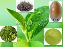 Best quality zenergreen organic bio super green tea extract