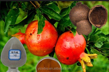 Natural Pomegranate peel extract with 90% Ellagic acid, 40% Punicalagin