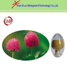 red clover extract Trifolium pratense L Biochanins