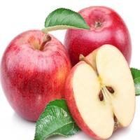 Apple Juice Concentrate brix 70