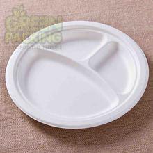 pratos de comida biodegradáveis de cana
