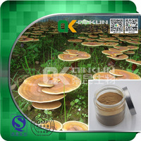 Skin-whitening 100% Natural Reishi Mushroom Extract Plant Extract Powder in bulk