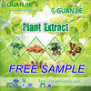 GMP Supplier 100% organic kale powder with free sample