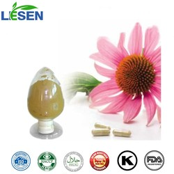 ISO FDA for Echinacea Herb Extract Echinacea Extract