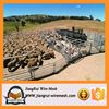 Hot-dipped Galvanized Livestock Panel With Gate