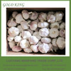 China fresh normal white and pure white garlic in different sizes