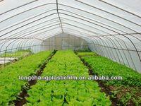 250um Agricultural Greenhouse Plastic Film with UV