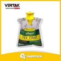 100 experienced staff nature friendly Fly catcher