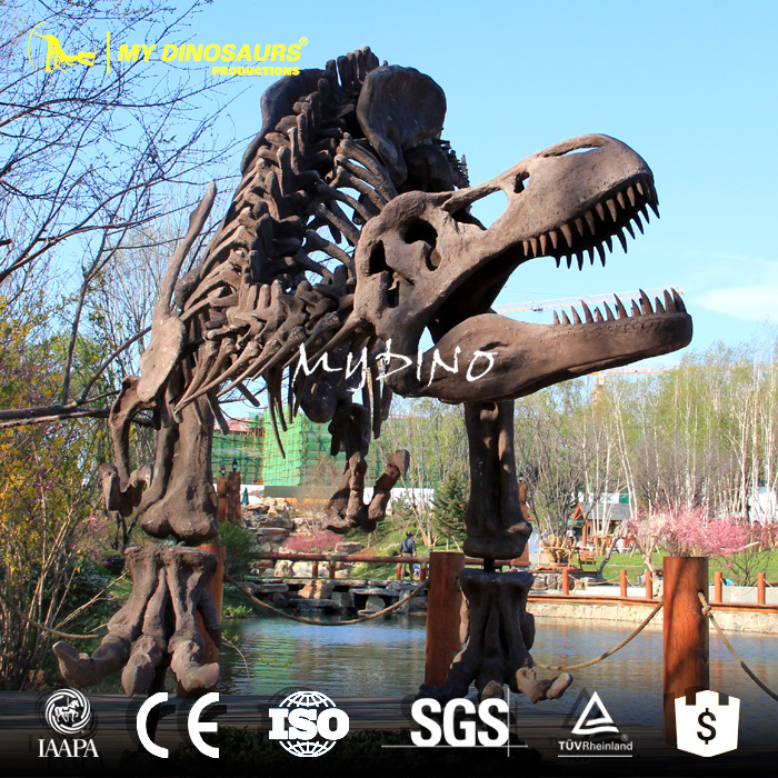 dinosaur skeleton1.jpg