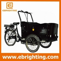 Denmark abs material cabin cargo bike tricycle denmark