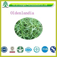 95% Natural Healthy Hearb Oldenlandia Extract Powder