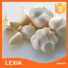 Wholesale Natural Garlic