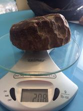 Raw amber stones in Hong Kong without prepayment