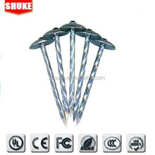China cheap umbrella head stainless steel roofing nails supplies