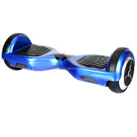 500w/800w/1000w 2 wheel electric balance scooter