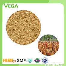 Bacillus Subtilis China fabricante alimentación de aves de corral probiótico en polvo en Sachet