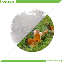 poultry antibiotics neomycin sulfate for animal health made in china