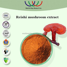 free sample HACCP KOSHER FDA high quality 100% natural reishi mushroom extract 4% ganoderma triterpenes supplier