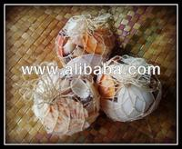 Shells in Abacca