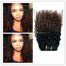 Sales Promotion Brazilian Deep Curly Remy Human Hair Extensions Ombre Two Tone Color Hair Weaving Weft T1B/4# Ombre Curly Hair