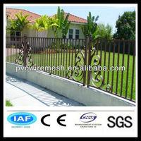 Good looking iron arch garden gate