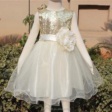 Boutique fashion sparkle flower girl dresses pink princess dress dresses for beach party