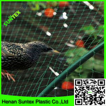 bird netting manufacturers supply rigid stretch bird guard mesh with competitive price