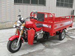 250cc three wheel gasoline adult tricycle for sale